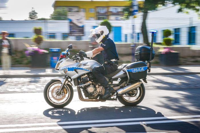 Policja Szczecin: Bezpieczne wakacje z Dżerym - kolejny czworonożny policjant uczy bezpiecznych zachowań